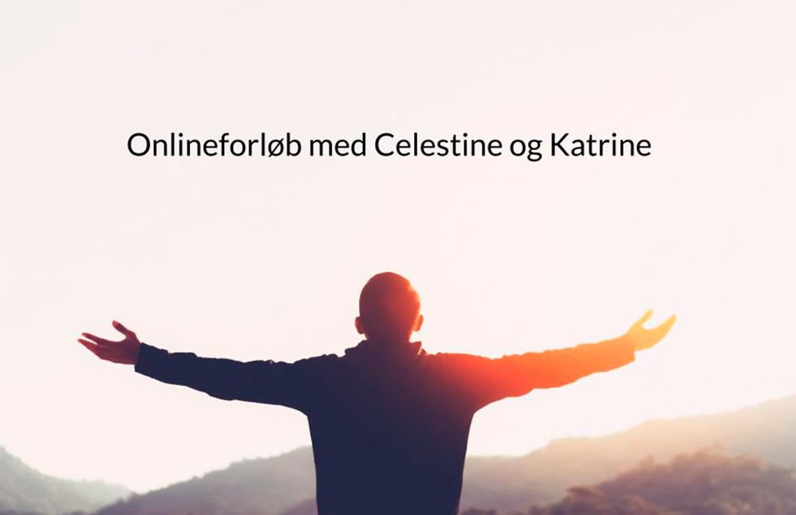 online-forloeb
